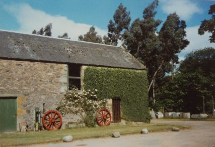 Tayfield Home Farm 1986