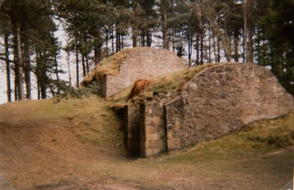 Salmon Fishing Ice House in Tentsmuir Forest