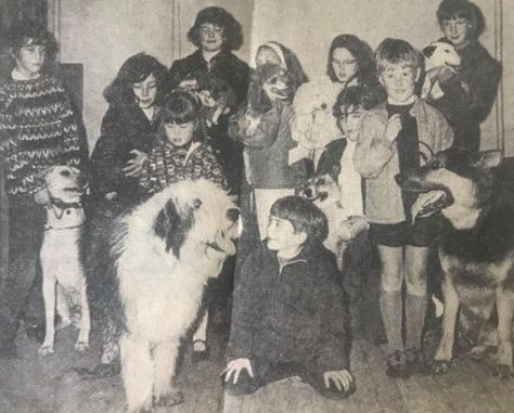 Pet Show 1970